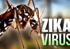 phong-chong-virus-zika